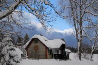 Auf Spurensuche im Schnee