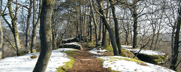 Winteraktiv
