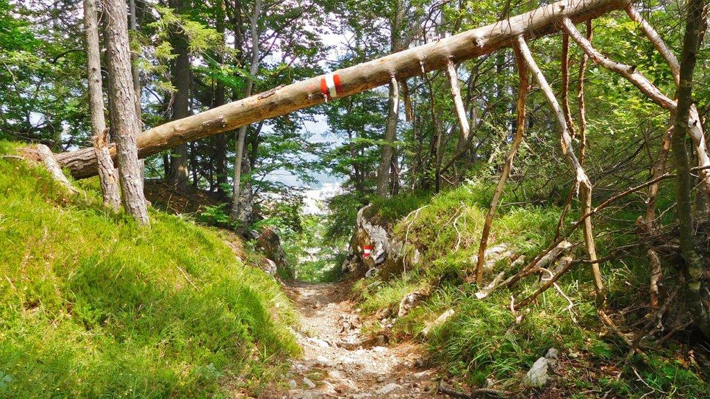 Wanderweg I Alpen