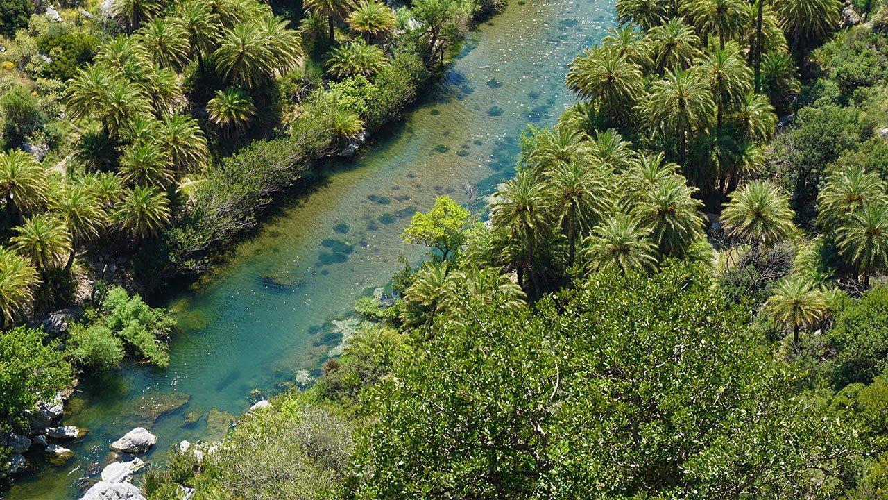 Palmen Preveli Beach