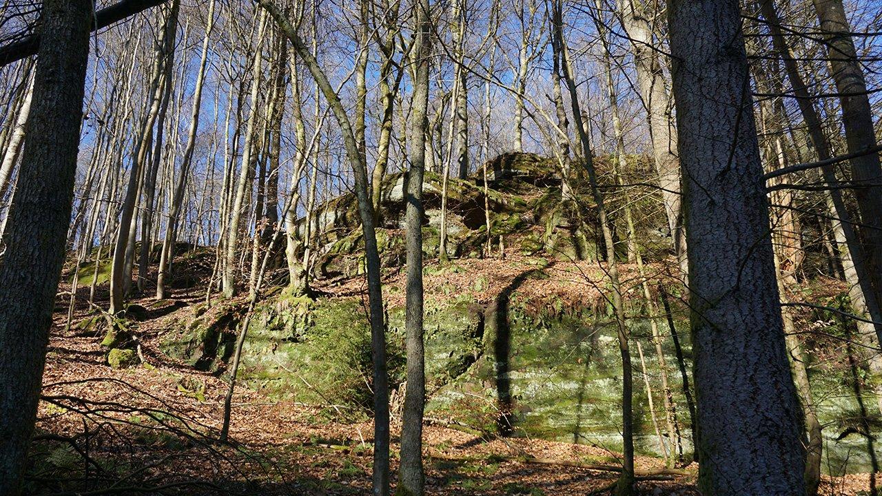 Felsenriff im Wald