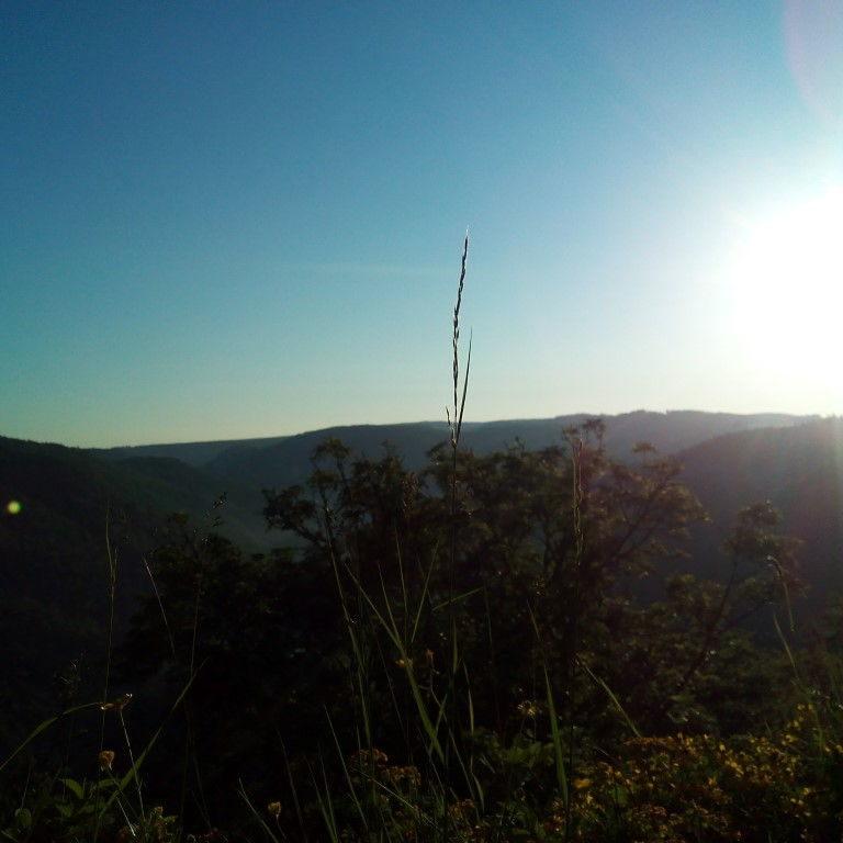 Ausblick mit Sonne