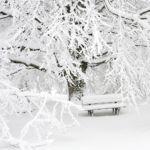 Sitzbank im Schnee